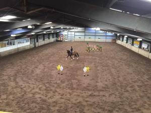 stallion show 1